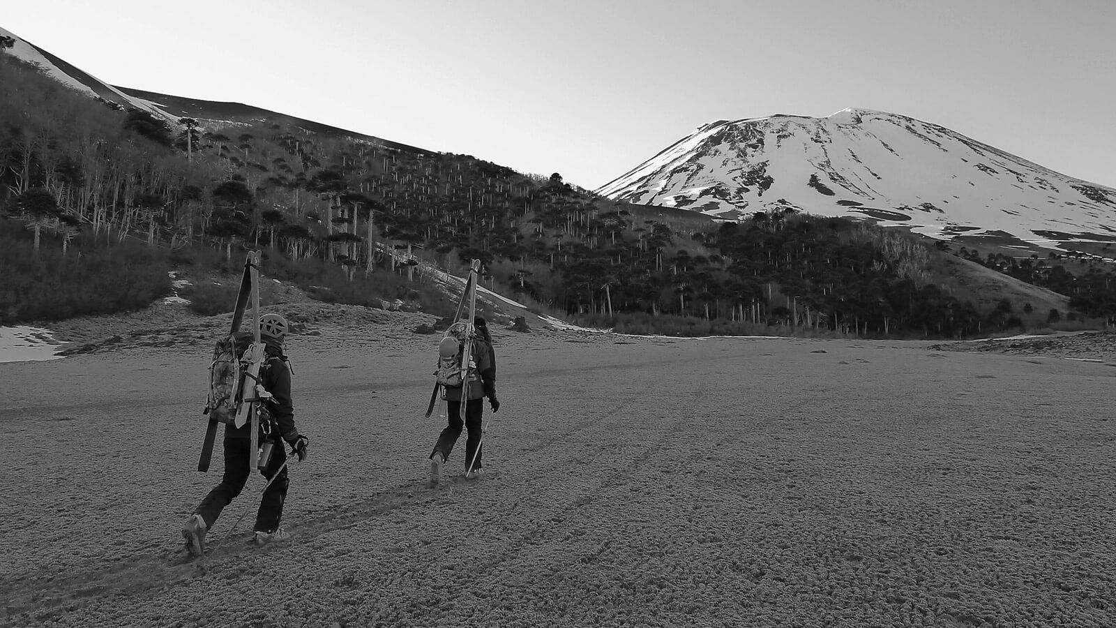 ingresar ficha catastro nacional acceso a la montaña fundacion plantae
