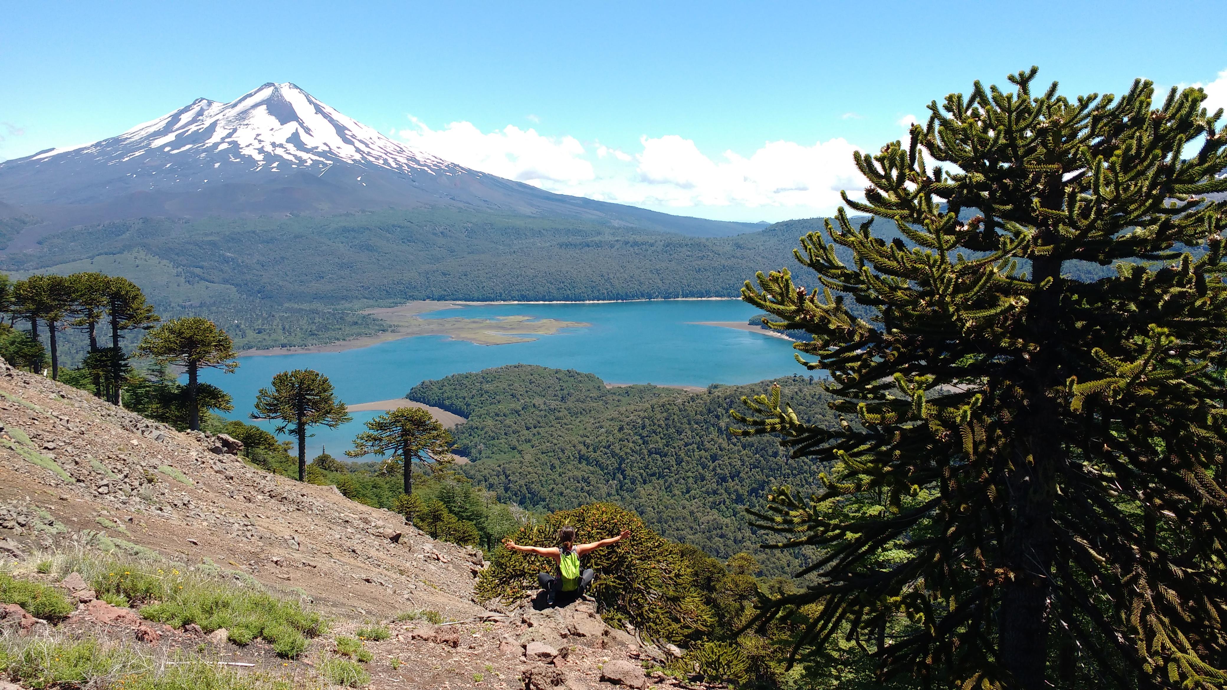 ¿Qué le falta a Chile en conservación y desarrollo sustentable?
